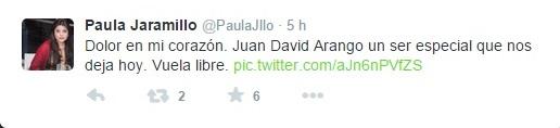 JuanDavid_arango1_El_Palpitar
