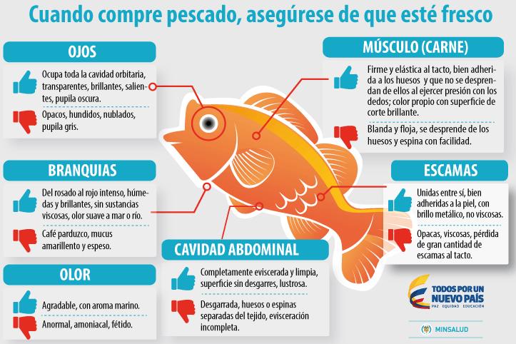 Cuidado_Pescados_El_Palpitar