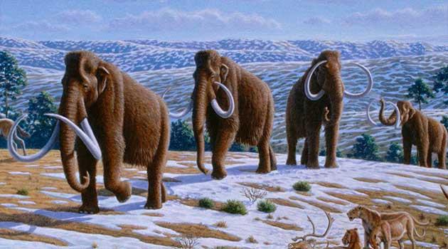 mamut_extinto