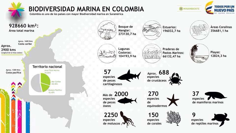 Gráfico_Biodiversidad_El_Palpitar