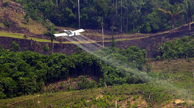 fumigacion-herbicida