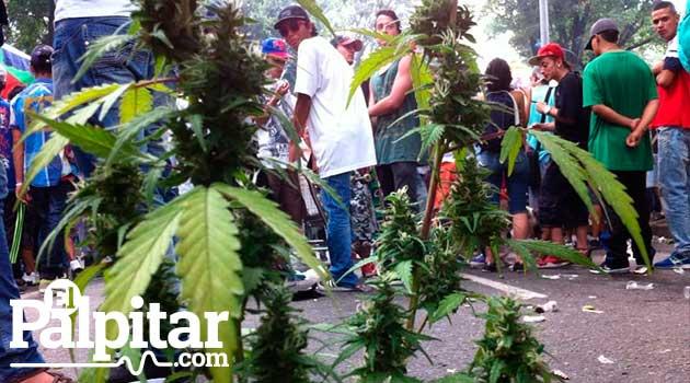 marcha_marihuana7