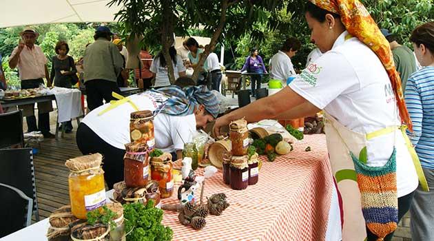 Mercados_Campesinos_El_Palpitar