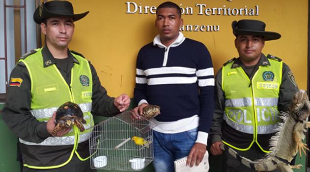 policia_animales_caucasia (1)