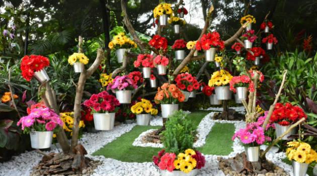 Orquídeas_Pájaros_Flores3
