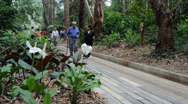 Parque_Ambiental_Bosques_Frontera2