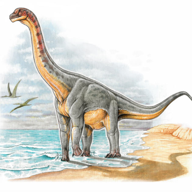 dinosaurio_colombiano_hallazgo2