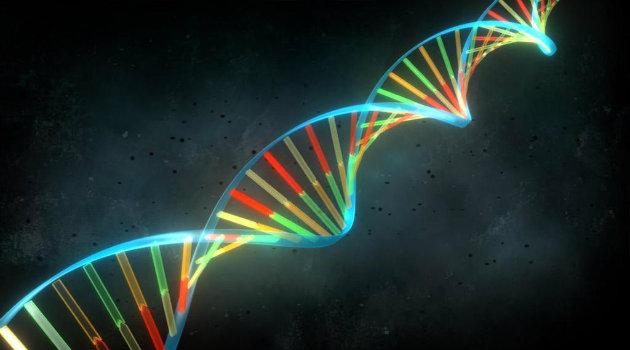 genetica_genoma_ciencia