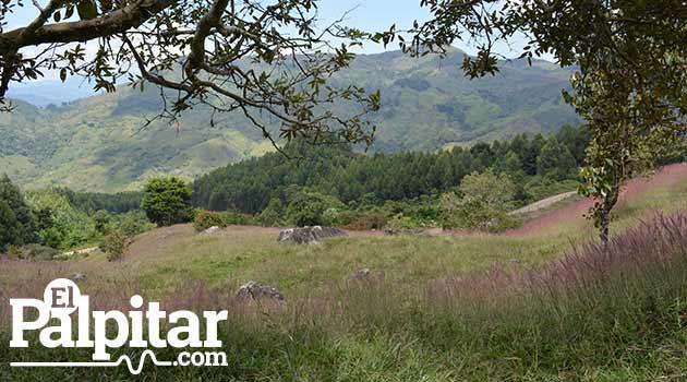 Areas_Protegidas_Guadalupe1_El_Palpitar