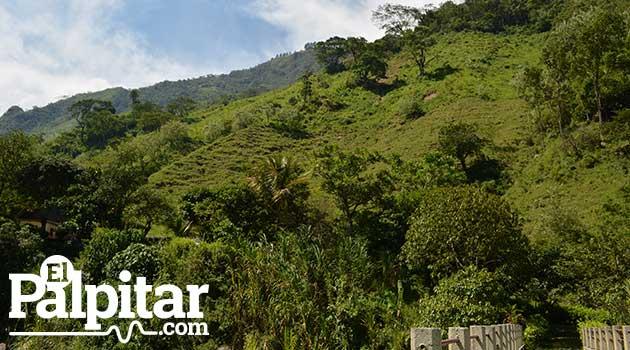 Areas_Protegidas_Guadalupe3_El_Palpitar