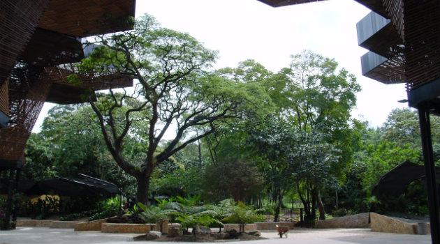 Jardín_Botánico