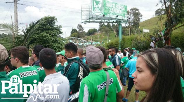 caravana_verde10