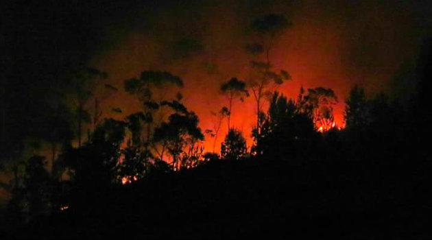 incendio_forestal_noche_guarne