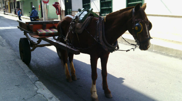 carreta_caballo_barbosa