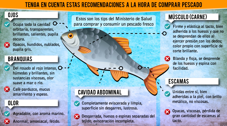 Infografia_Recomendaciones_Pescado_El_Palpitar