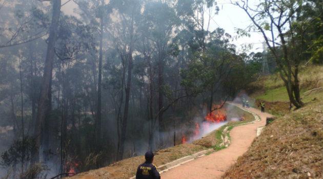 incendio_forestal_robledo 2