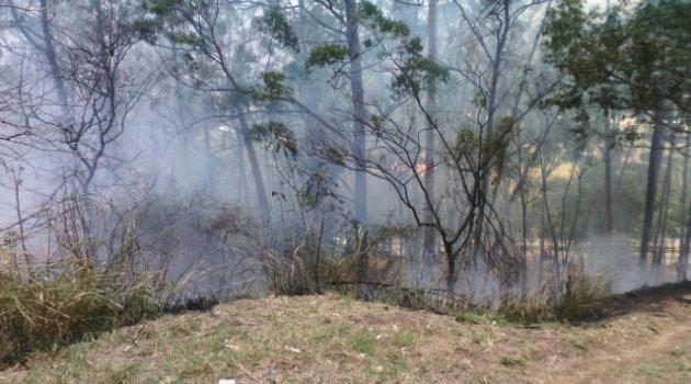 incendio_forestal_robledo 3