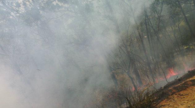 incendio_forestal_robledo