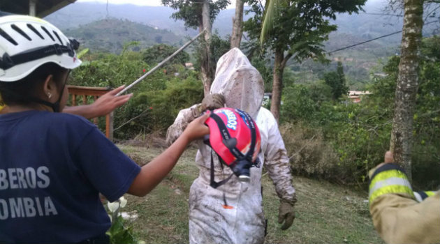 bombero_abejas (1)