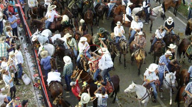 cabalgata_medellín_caballos_maltrato