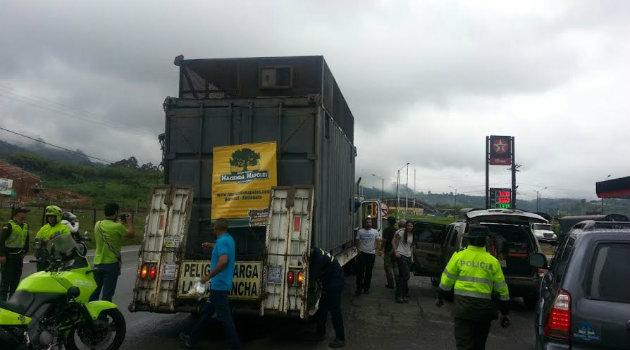 elefante_zimbawe_napoles_transporte