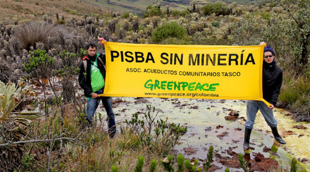 Foto: Cortesía Greenpeace.