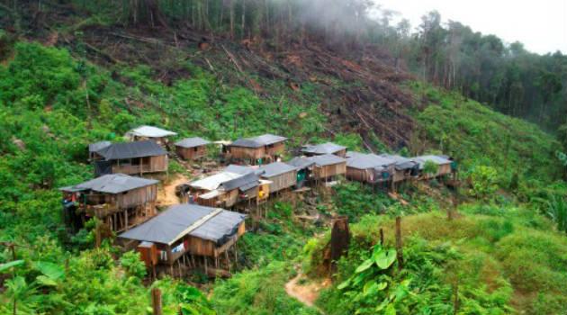 serranía_san_lucas_deforestación