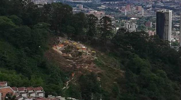 tala_deforestación_palmas