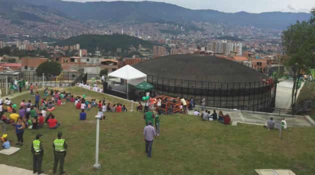 uva_guayacanes_