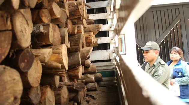 madera_extracción_policía