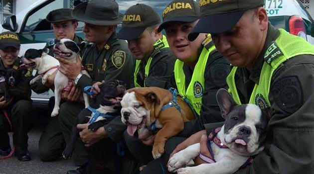 perro_rescate_policia3