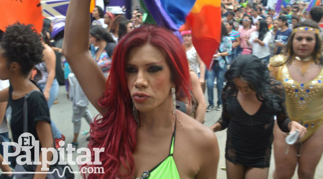 Marcha gay 6