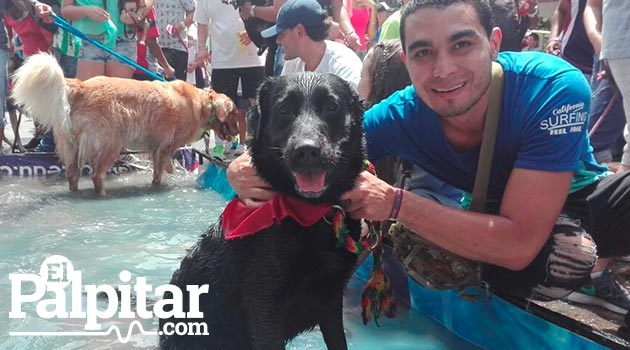 perros_marcha_canina3_chester
