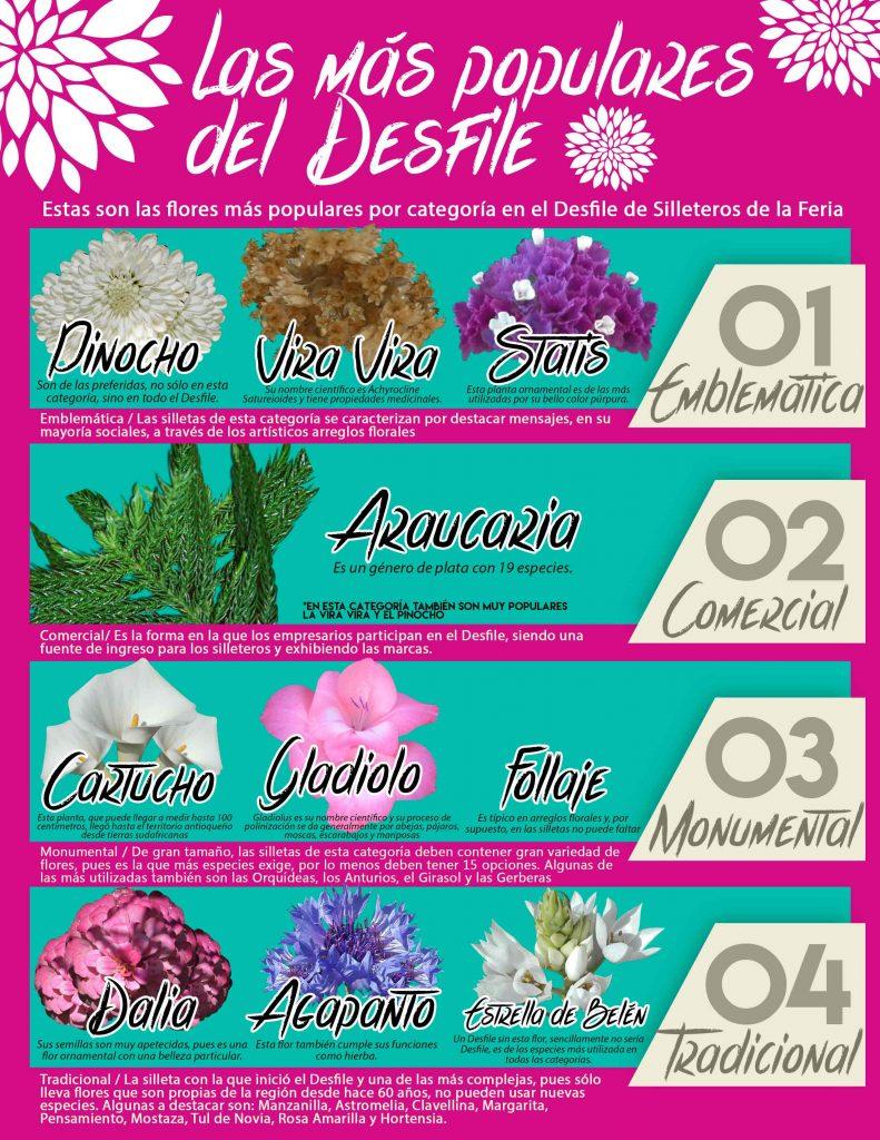 Flores_Populares_Desfile_El_Palpitar