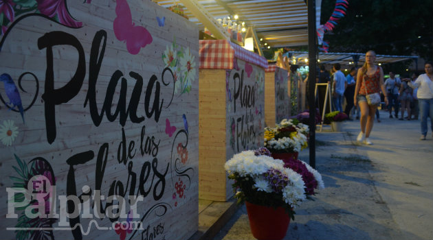 Plaza-Flores-Palpitar (11)