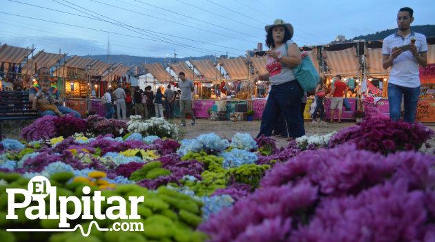 Plaza-Flores-Palpitar (4)