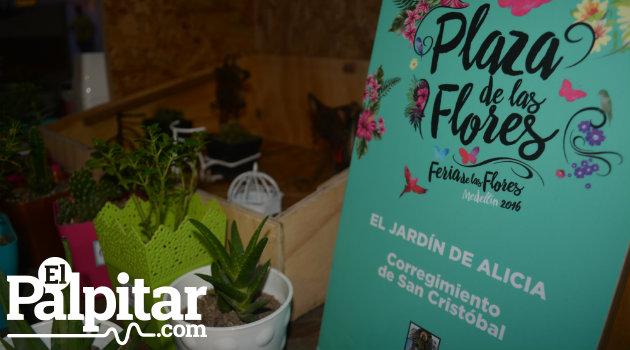 Plaza-Flores-Palpitar (6)