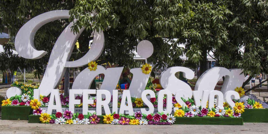 Plaza_Flores_El_Palpitar