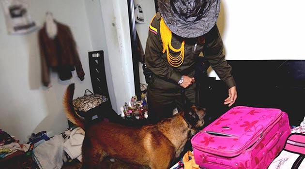 policia_perros_allanamiento