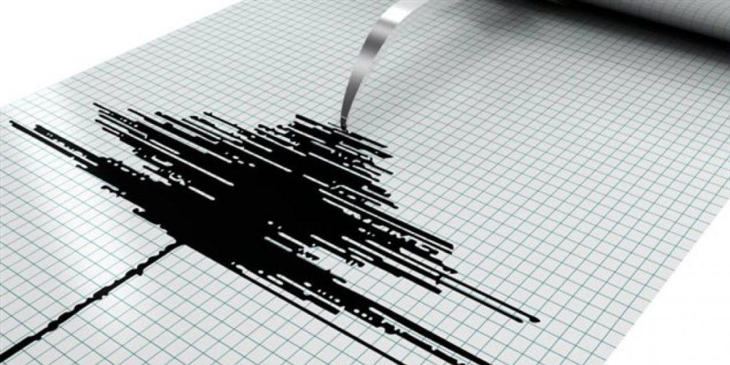 sismografo-palpitar-cortesía