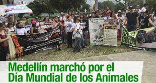 Día_Mundial_Animales_Opinión_El_Palpitar