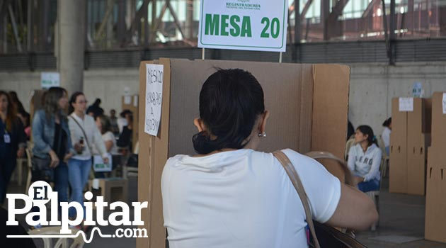 Elecciones1_Plebiscito_El_Palpitar