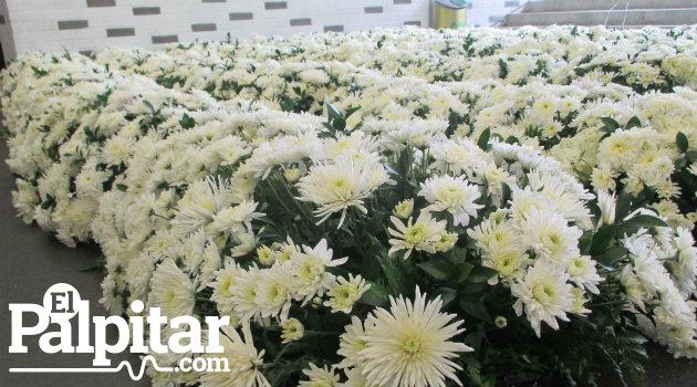 flores_atanasio_homenaje