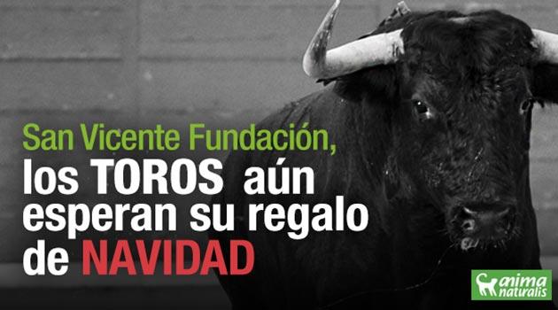Toros_San-Vicente-Fundación_El_Palpitar