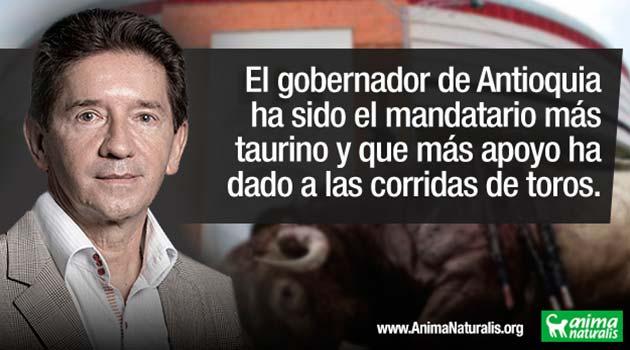 Un-taurino-en-grande_Luis-Pérez